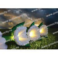Надувные цветы Ромашка, фото 1