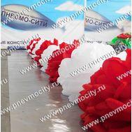 Пневмогирлянда Свадебные Розы, фото 1
