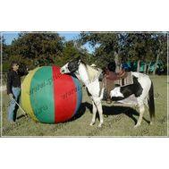 Гигантский мяч, фото 1