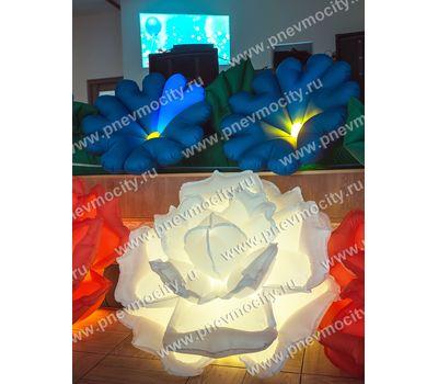 Надувные цветы на свадьбу Розы, фото 4